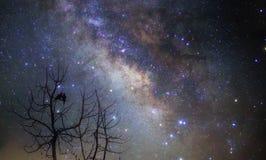 El amante en la noche estrellada Fotos de archivo