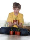 El amante joven de plantas Imagen de archivo libre de regalías