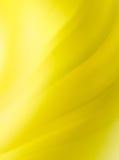 El amarillo abstracto curva el fondo Fotos de archivo libres de regalías