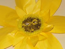 El amarillo de la máscara del papel de la flor de Sun embroma apoyos de las ilustraciones de la escuela imagen de archivo libre de regalías