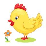 El amarillo dibujado mano linda del pollo del gallo del polluelo embroma el ejemplo del vector de la historieta en el fondo blanc Fotos de archivo libres de regalías