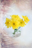 El amarillo florece crisantemos en un vidrio en un fondo blanco fotos de archivo libres de regalías