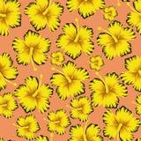 El amarillo florece el fondo rosado inconsútil del hibisco ilustración del vector