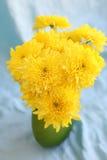 El amarillo florece hrysanthemums en un florero en un fondo azul imagen de archivo libre de regalías