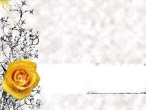 El amarillo se levantó Imagen de archivo libre de regalías