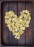 El amarillo se marchitó los pétalos color de rosa Fotografía de archivo libre de regalías