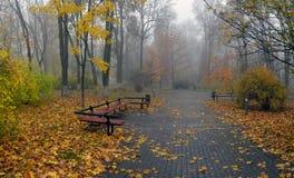 El amarillo se va en un banco en el parque Fotografía de archivo libre de regalías