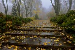 El amarillo se va en un banco en el parque Foto de archivo