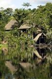 El Amazonas Fotografía de archivo