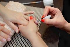 El amo de la manicura pinta clavos con el esmalte de uñas durante el procedimiento de las extensiones del clavo con el gel Fotos de archivo