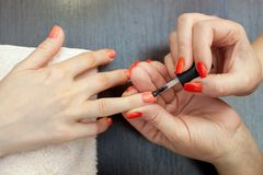 El amo de la manicura pinta clavos con el esmalte de uñas durante el procedimiento de las extensiones del clavo con el gel Imagenes de archivo