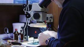 El amo mira a través de un microscopio, soldando almacen de video