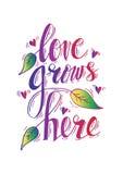 El amor crece aquí stock de ilustración