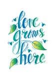 El amor crece aquí ilustración del vector