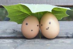El amor de huevos Foto de archivo