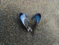 El amor está por todas partes Imagen de archivo libre de regalías