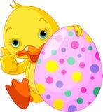 El anadón de Pascua da los pulgares para arriba Foto de archivo libre de regalías