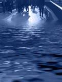 El anfibio-azul foto de archivo