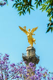 El Angel Royalty Free Stock Photo