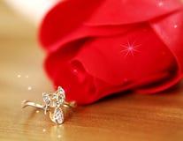El anillo brillante al precioso ella Imagen de archivo libre de regalías