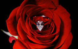 El anillo de compromiso del diamante dentro de un rojo se levantó Imágenes de archivo libres de regalías