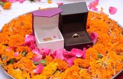 El anillo -01 imagen de archivo