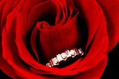 El anillo de diamante en rojo se levantó Foto de archivo libre de regalías