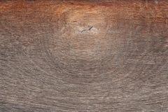 El anillo de madera de gnarl el fondo Foto de archivo