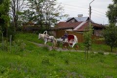 El anillo de oro de Rusia Suzdal El caballo de carro monta a través de las calles de la ciudad vieja foto de archivo