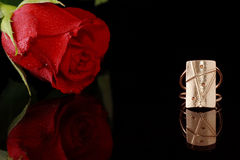 El anillo de oro y se levantó Foto de archivo libre de regalías