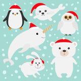 El animal polar ártico fijó en el sombrero rojo de Papá Noel Oso blanco, búho, pingüino, unicornio-pescado del narval del conejo  Fotos de archivo