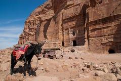 El anuncio-Deir del monasterio, Petra antiguo de la ciudad de Nabataean, Jordania Templo antiguo en el Petra Imagen de archivo libre de regalías