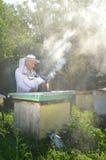 El apiarist mayor experimentado está fijando un fuego en un fumador de la abeja Imagenes de archivo