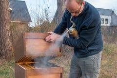 El apicultor comprueba a su colonia de la abeja usando humo Imagen de archivo libre de regalías