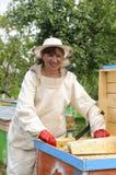 El apicultor de la mujer se ocupa abejas Fotos de archivo libres de regalías