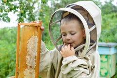 El apicultor del muchacho ahorra la miel fresca de una célula de la miel en un colmenar Apicultura fresca de la miel Imagen de archivo