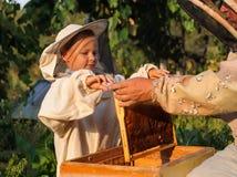 El apicultor del niño pequeño trabaja en un colmenar en la colmena Imagen de archivo