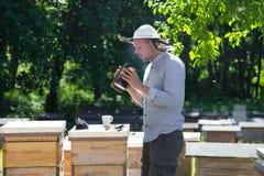 El apicultor en el trabajo por la abeja de madera encorcha Granjero joven en su granja Foto de archivo libre de regalías