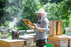 El apicultor en el trabajo por la abeja de madera encorcha Granjero joven en su granja Fotografía de archivo