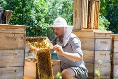 El apicultor en el trabajo por la abeja de madera encorcha Granjero joven en su granja Fotos de archivo