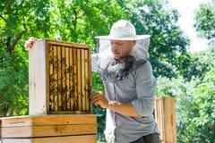 El apicultor en el trabajo por la abeja de madera encorcha Granjero joven en su granja Imagenes de archivo