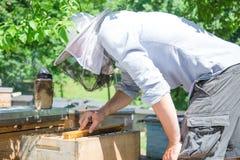 El apicultor en el trabajo por la abeja de madera encorcha Granjero joven en su granja Foto de archivo
