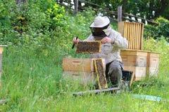 El apicultor en el trabajo por la abeja de madera encorcha Granjero joven en su granja Imagen de archivo