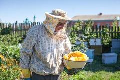 El apicultor es miel de los controles en panales en el colmenar Apicultor en el colmenar Imagen de archivo