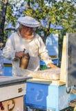 El apicultor está trabajando con las abejas y las colmenas en el colmenar Fotografía de archivo libre de regalías