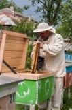 El apicultor está trabajando con las abejas y las colmenas en el colmenar Imágenes de archivo libres de regalías
