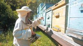 El apicultor que trabaja en las abejas del colmenar vuela la cámara lenta coloreada multi de la colmena del enjambre video hombre almacen de video