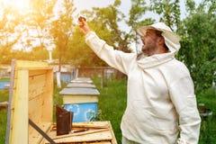 El apicultor se quita en la cámara de la acción del colmenar Blog video Imagenes de archivo