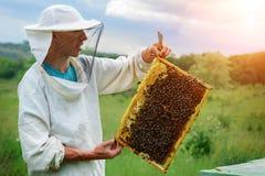 El apicultor trabaja con las abejas cerca de las colmenas Apicultura imagen de archivo