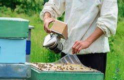 El apicultor trabaja con las abejas cerca de las colmenas Apicultura Fotos de archivo libres de regalías